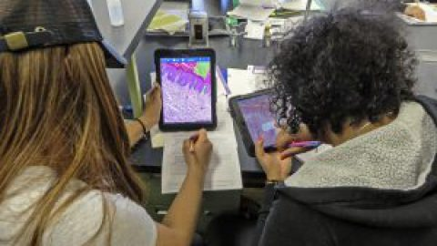 The Pedagogical Value of Mobile Devices and Software in the Anatomy & Physiology Laboratory