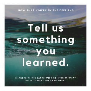Tell us what you learned
