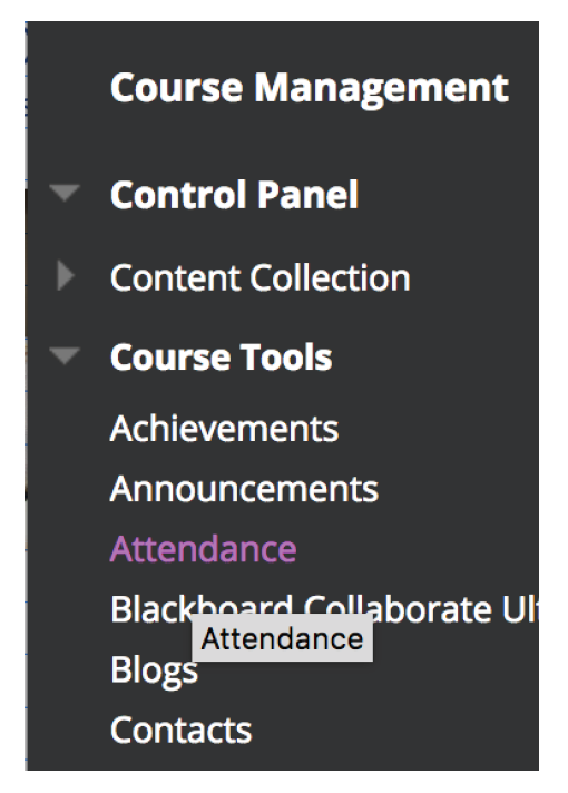 click on Attendance in Course Tools